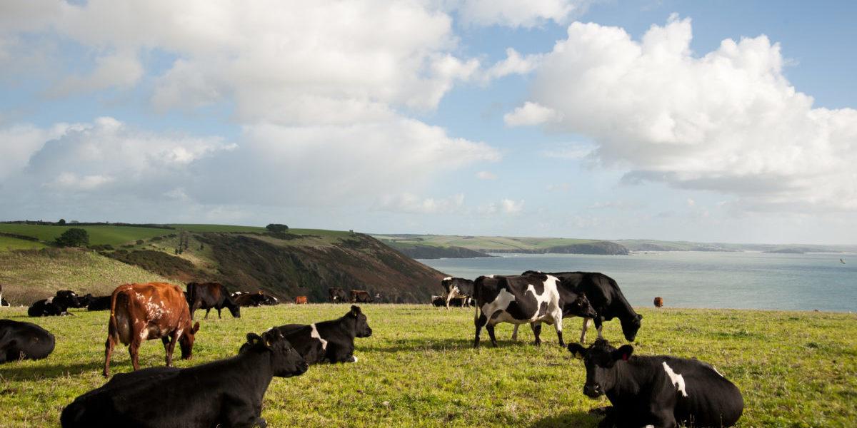 3 deeply rural ag landscape