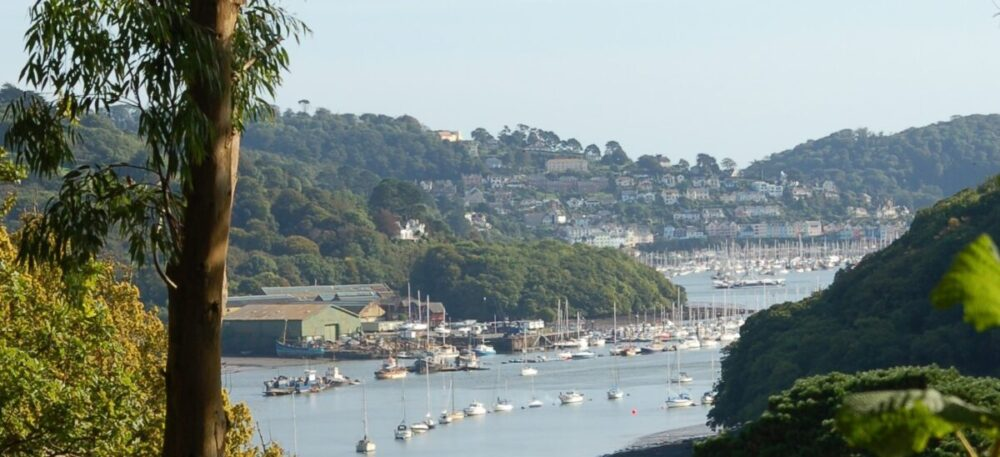 DM to Dittisham walk banner 4