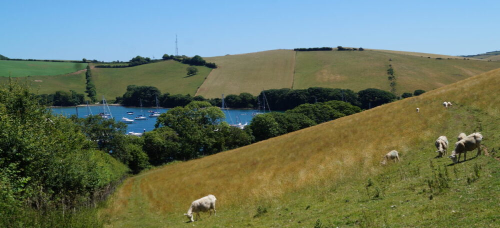 salcombe snapes point walk banner image (1)